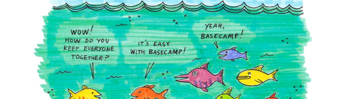 Basecamp Image