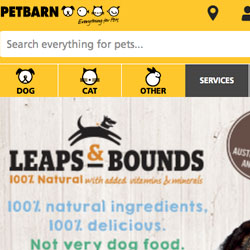 Petbarn Site Audit